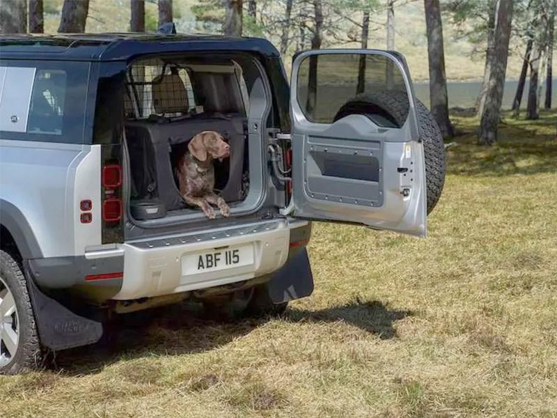 Jaguar Land Rover проводит испытания на собаках