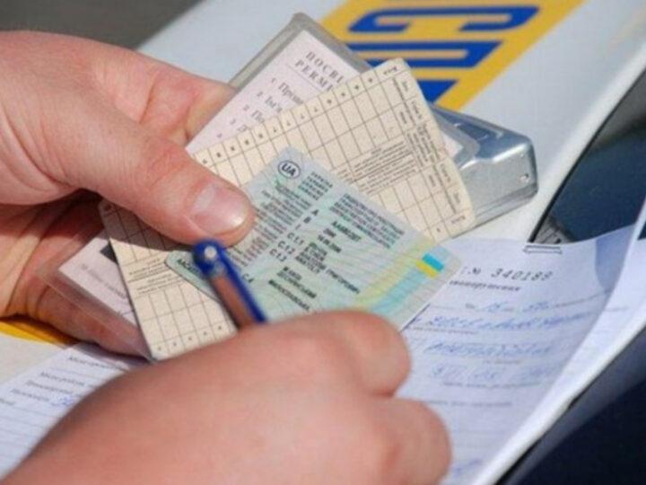 Водительские права 2020: получение и замена